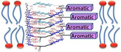 2012_JOC_aromatic membrane