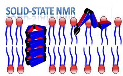 2012_Langmuir_Solid NMR