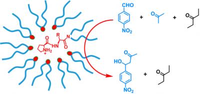 2015_OBC_MINP Prolinamide