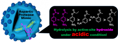 2021_ACSCatal_Aspartic Protease Mimic